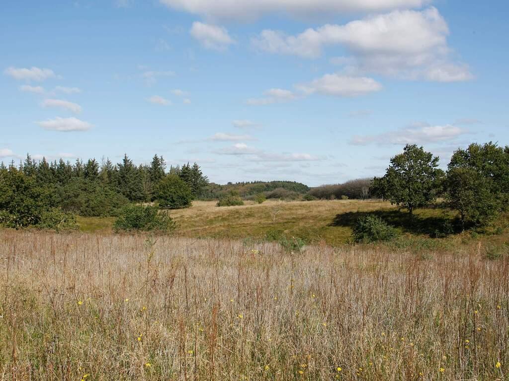 Umgebung von Ferienhaus No. 38071 in Skals