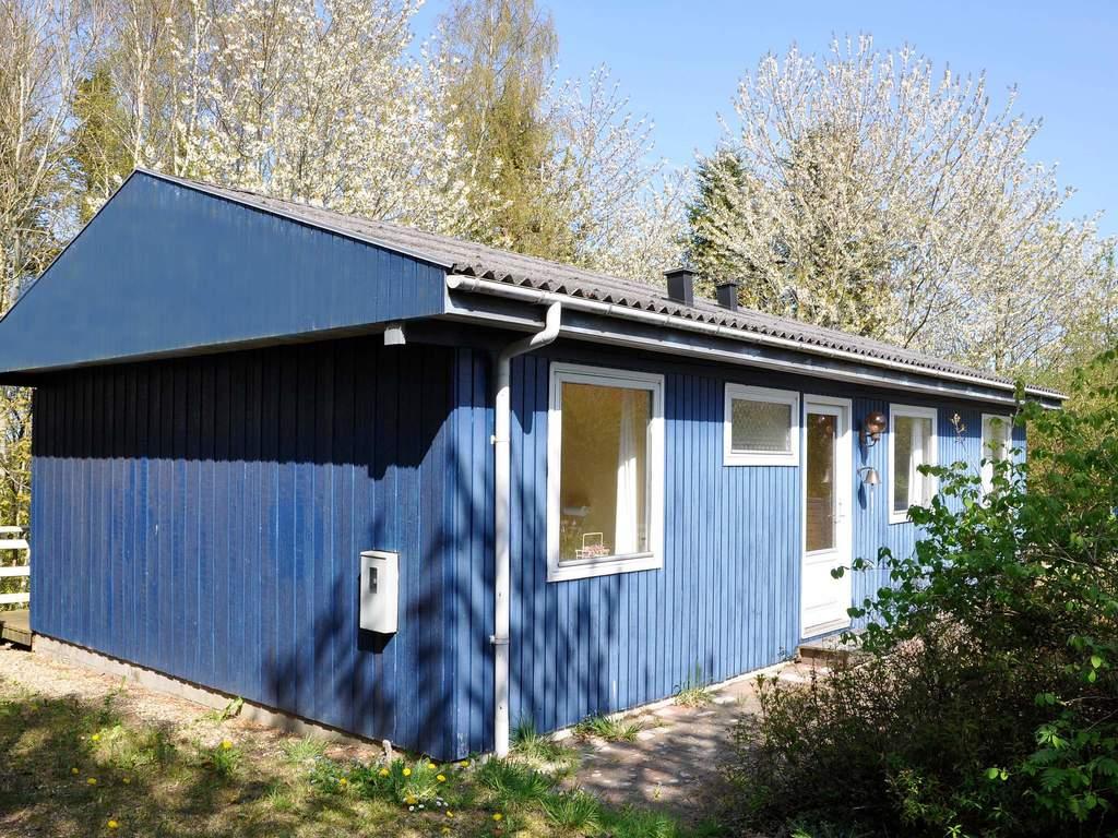 Zusatzbild Nr. 01 von Ferienhaus No. 42485 in Odder
