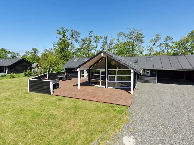 Detailbild von Ferienhaus No. 42730 in Nørre Nebel