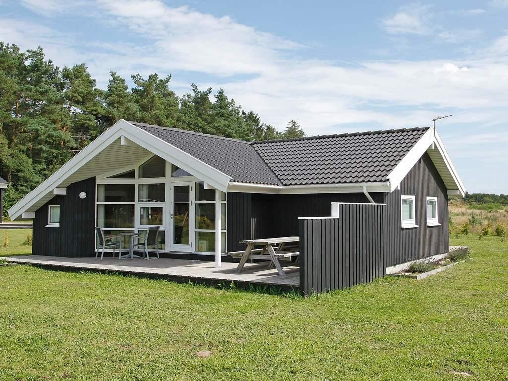 Detailbild von Ferienhaus No. 42748 in Skals
