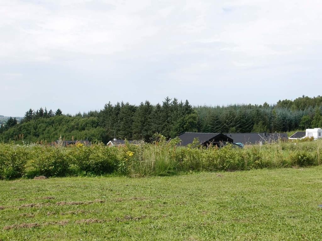 Umgebung von Ferienhaus No. 42748 in Skals