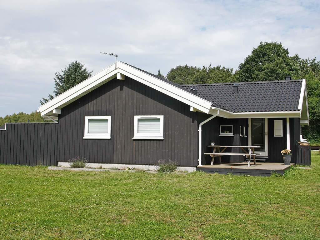 Zusatzbild Nr. 02 von Ferienhaus No. 42748 in Skals