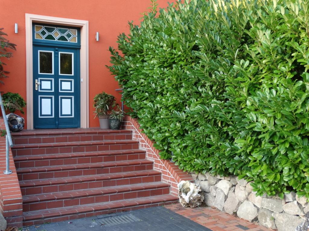 DEB 028 Ferienappartements mit Meerblick, Ferienap