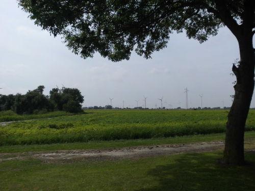 Weitblick über Felder und Wiesen