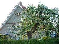Ferienwohnung Bei-Veronica in Borgholzhausen - kleines Detailbild