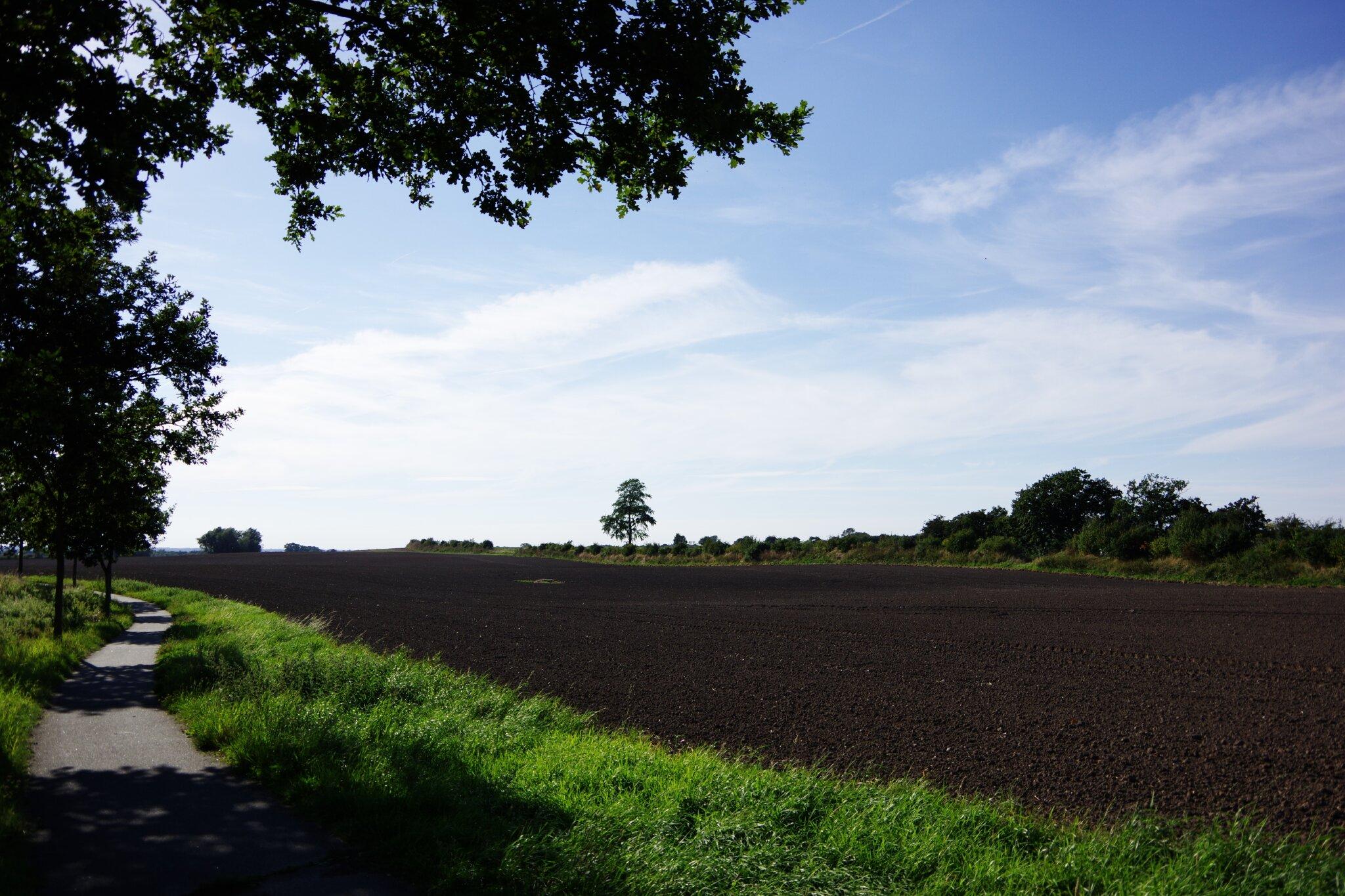Fahrradweg nach Oldenburg
