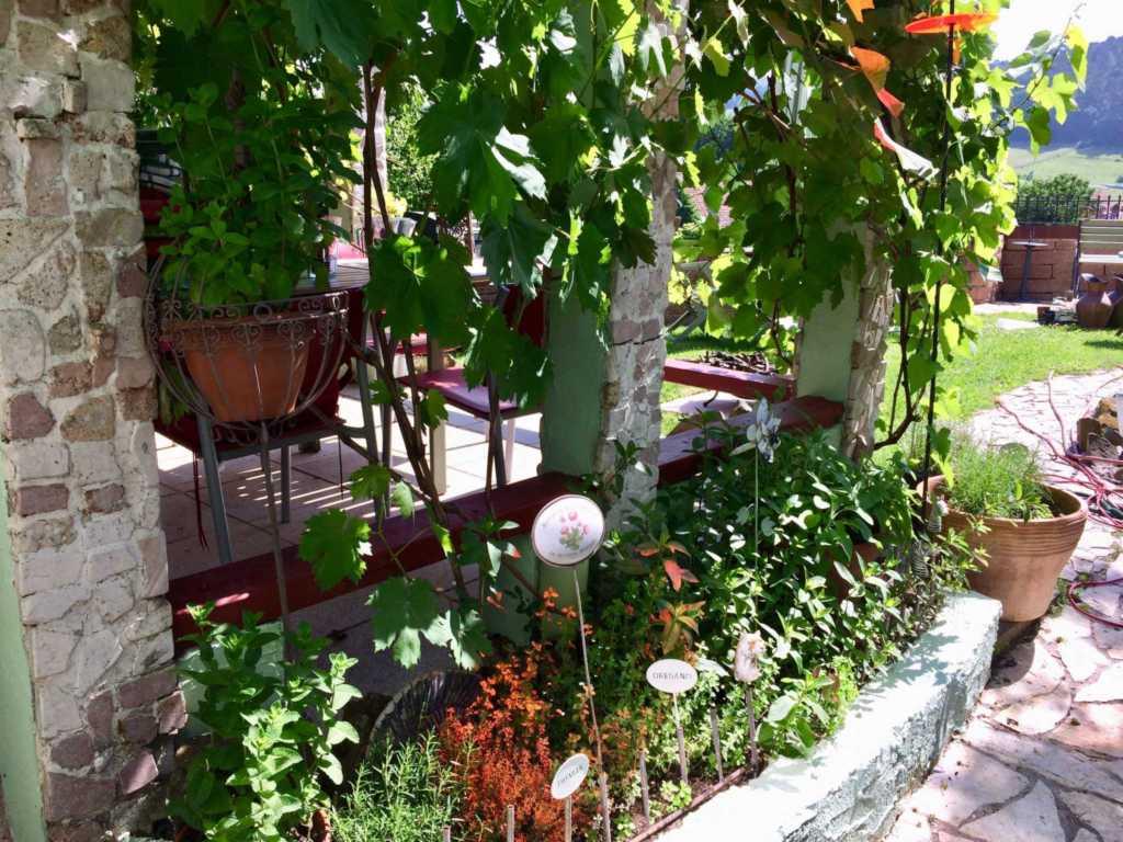 Casa Verde, Ferienwohnung Arte