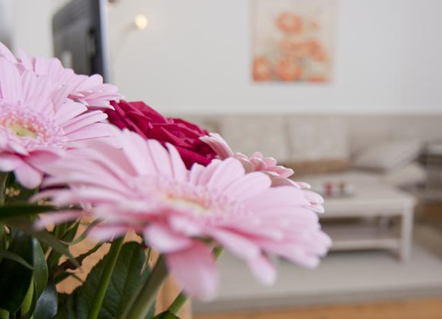 Haus Blumenhof, Wohnung Südterrasse (1)