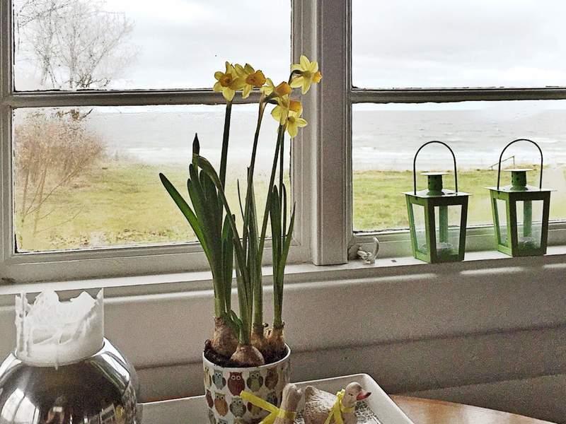 Zusatzbild Nr. 04 von Ferienhaus No. 62339 in Alling�bro