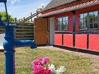 Ferienhaus in Nexø, Haus Nr. 9006 in Nexø - kleines Detailbild