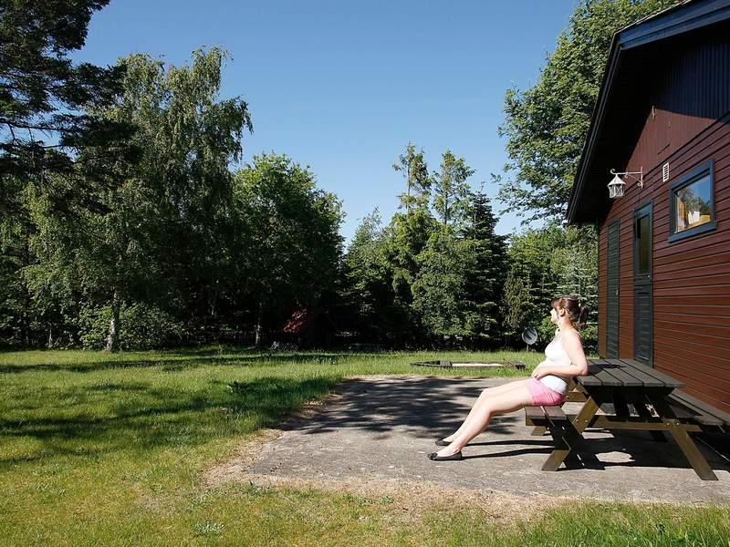 Zusatzbild Nr. 02 von Ferienhaus No. 13376 in Højslev