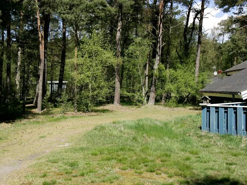 Umgebung von Ferienhaus No. 31063 in Nex�