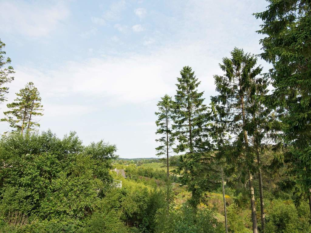 Umgebung von Ferienhaus No. 31747 in Ebeltoft