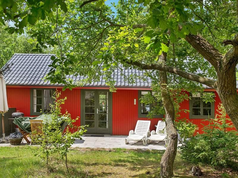 Zusatzbild Nr. 04 von Ferienhaus No. 31903 in Nexø