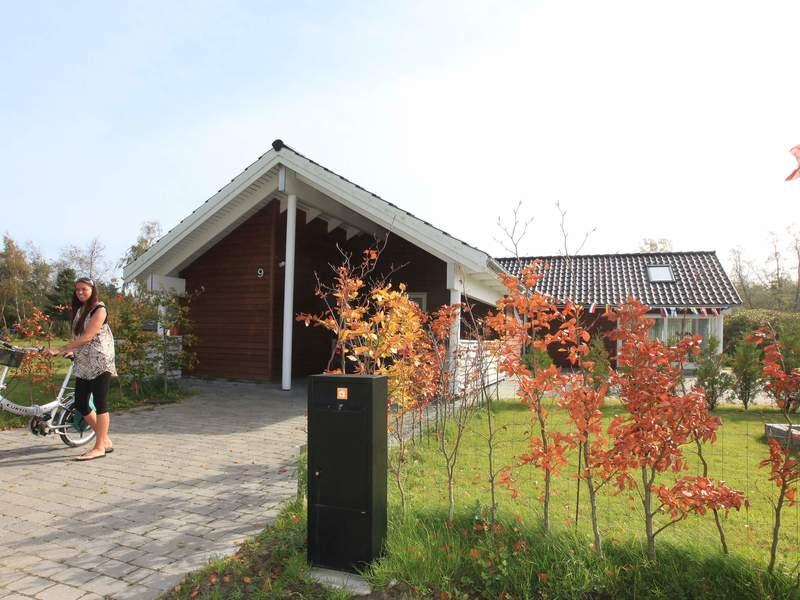 Umgebung von Ferienhaus No. 33325 in Væggerløse
