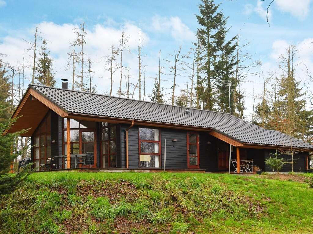 Zusatzbild Nr. 06 von Ferienhaus No. 33450 in Skals