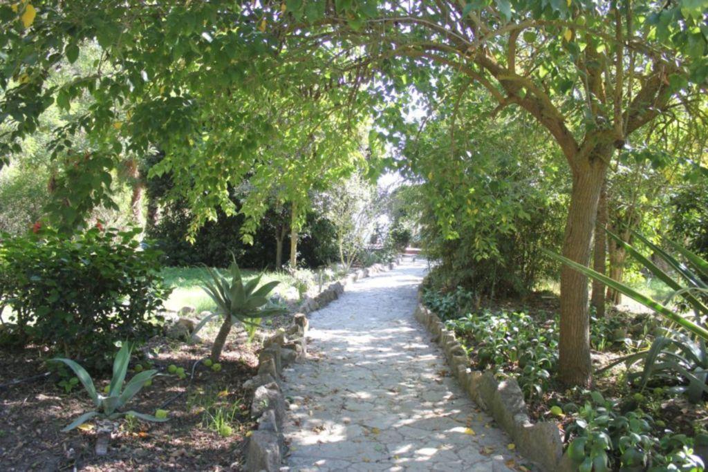 Finca San Ambrosio, Apartment El Chozo - Gartenhau