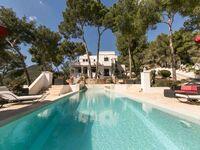 Ibiza style villa 250 in Ibiza Stadt - kleines Detailbild