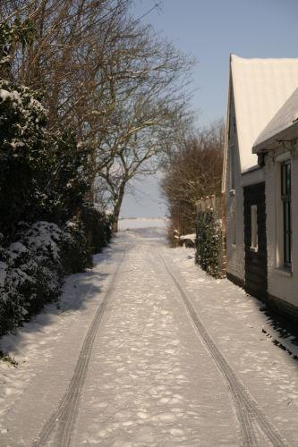 Zusatzbild Nr. 08 von Ferienhaus 'De Kemphaan Texel' - Studio