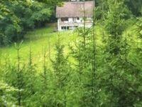 Ferienwohnung 'Aggertalsperre' in Gummersbach - kleines Detailbild