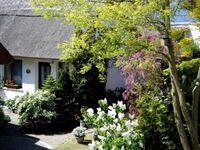 Ferienhaus Sommerlust, Ferienhaus in Ückeritz (Seebad) - kleines Detailbild
