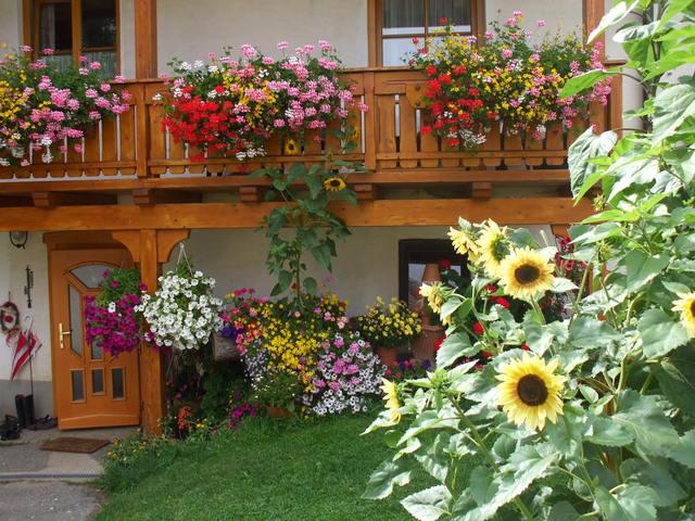 Bauernhof Pension Juri, Ferienwohnung Sunnseitn