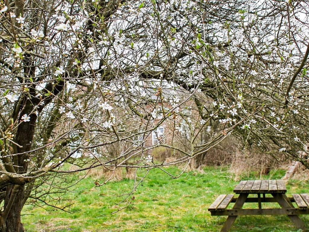 Zusatzbild Nr. 03 von Ferienhaus No. 63179 in Højer