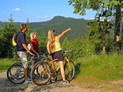 Thüringer Wald im Sommer