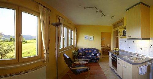 Wohnraum mit Küchzeile