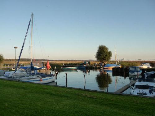 Hafen Zempin