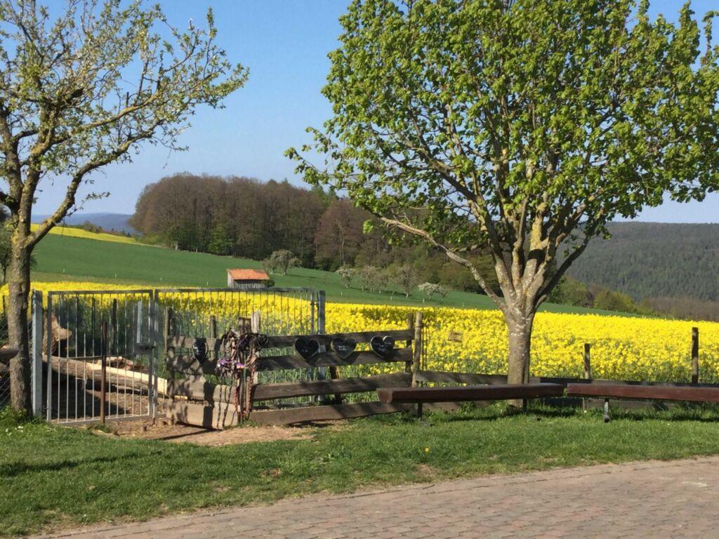 Ferienhof Sennert, Fewo Sonnenblume