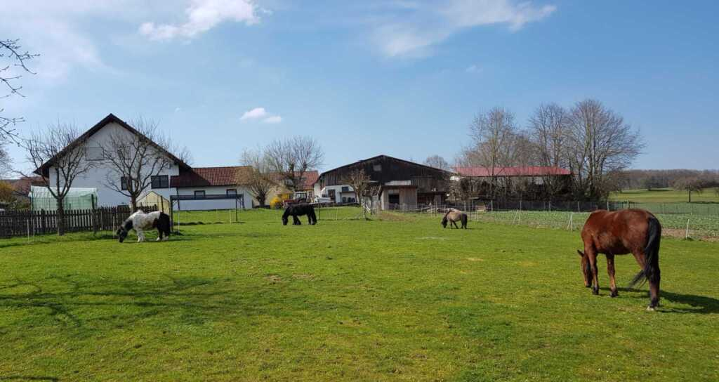 Ferienhof Sennert, Fewo Rose