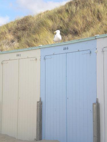 Strandkabine inklusive