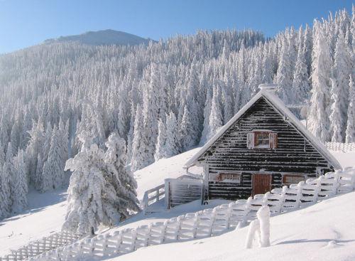 Zusatzbild Nr. 09 von Primus Hütte
