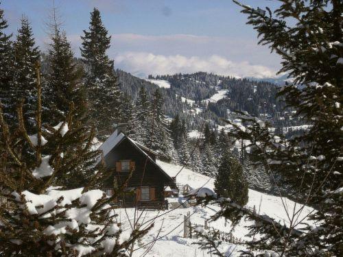 Zusatzbild Nr. 10 von Primus Hütte