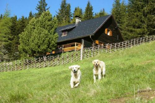 Zusatzbild Nr. 12 von Primus Hütte