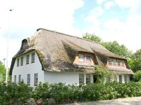 Charmante Ferienwohnung am Mühlendeich in Vollerwiek - kleines Detailbild