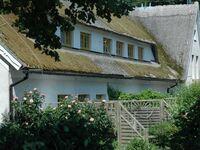 H�fthus 17, HH17 in Alt Reddevitz - kleines Detailbild