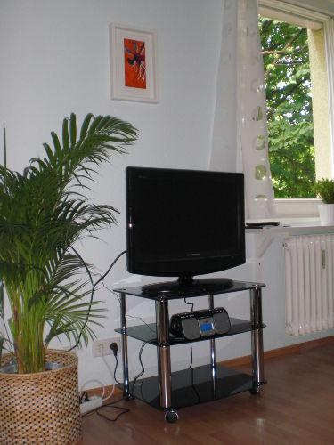 TV-Flachbild