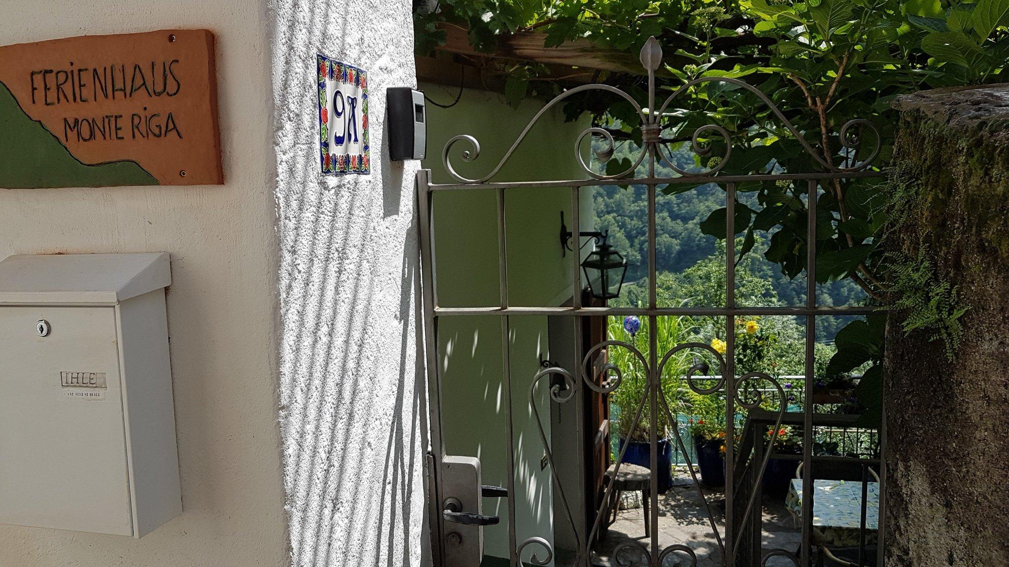 Terrasse mit Weinpergola