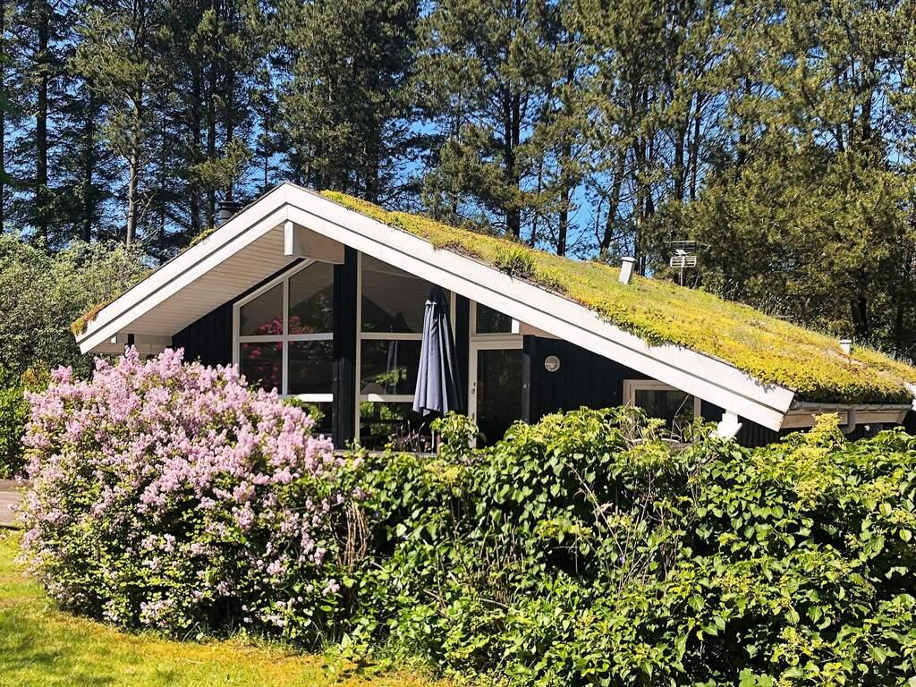 Zusatzbild Nr. 02 von Ferienhaus No. 65590 in Blokhus