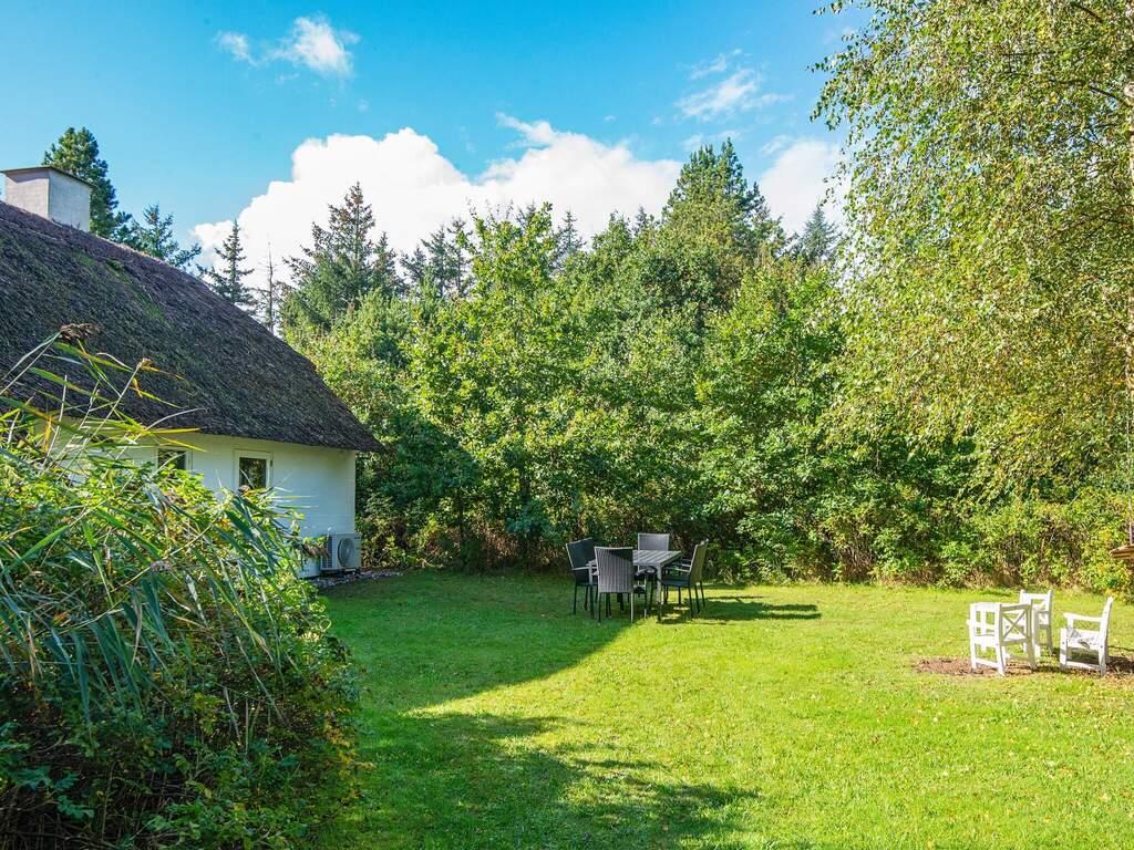 Umgebung von Ferienhaus No. 65667 in Ulfborg