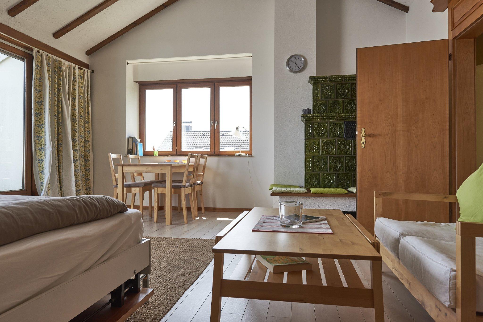 Wohn-/Schlafzimmer mit Dachterrasse