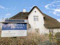 'Lille Björn', HT West, Mitte, 50-51 'Lille Björn', HT West, Mitte in Wenningstedt-Braderup - kleines Detailbild