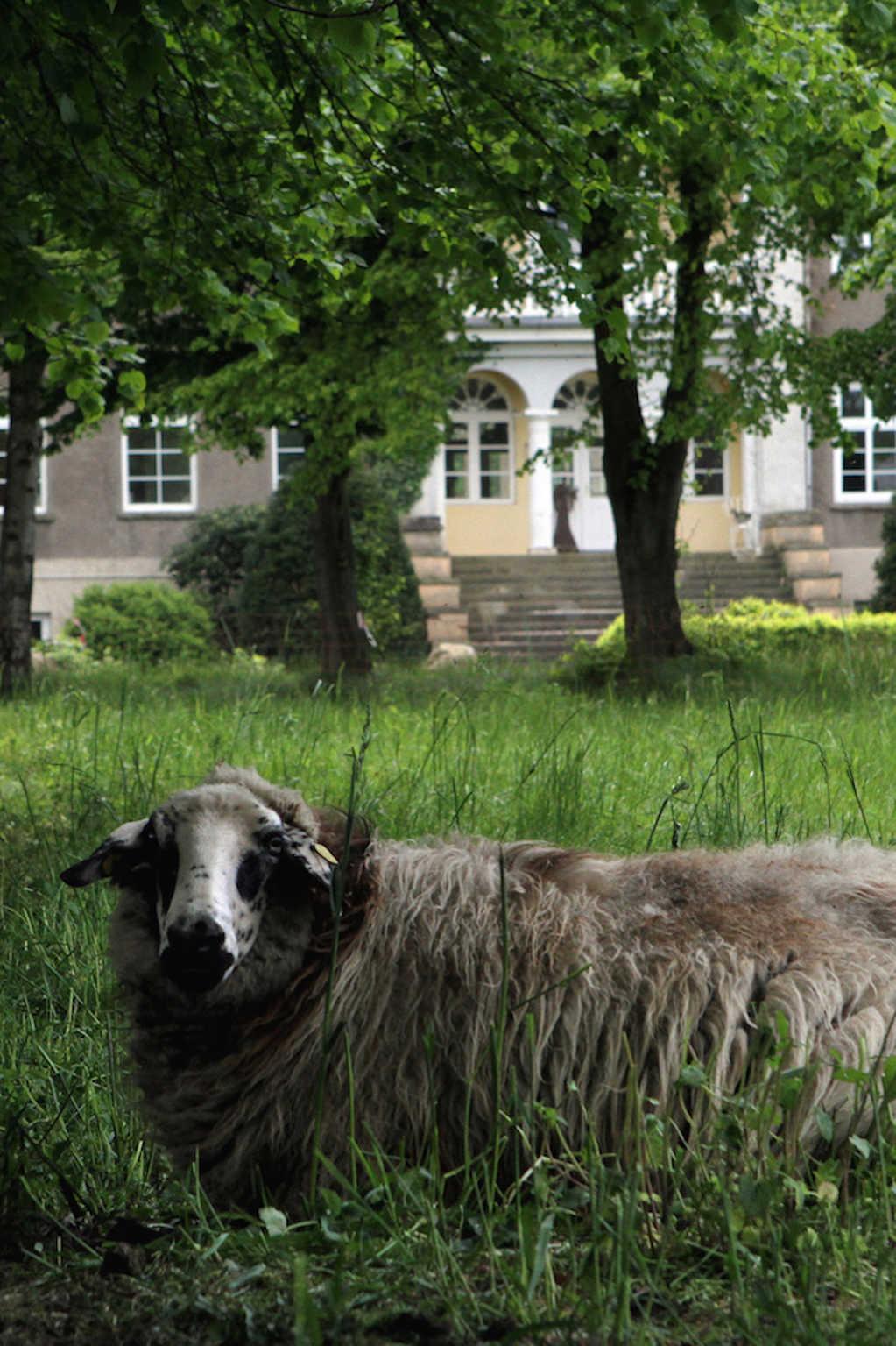 Ferienwohnungen in l�ndlicher Idylle nahe Schwerin