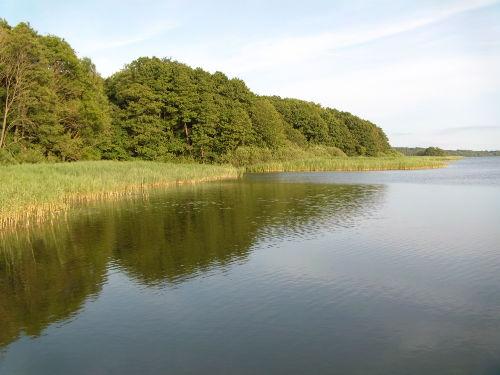 Blick vom Gievitzer Park auf den See