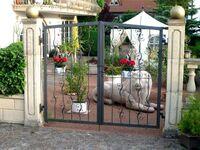 Villa Roder, FEWO III in Freiburg - kleines Detailbild