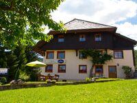 Ferienwohnung 'Zum Dorfkrug' in Feldberg-Altglashütten - kleines Detailbild