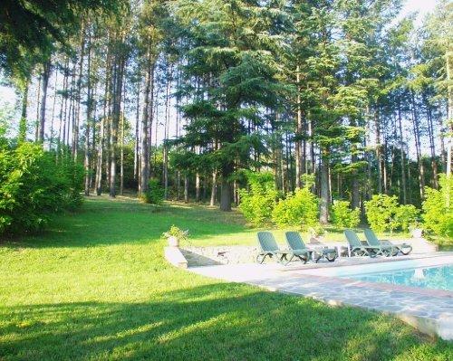 oberer Garten mit Pool + Wäldchen