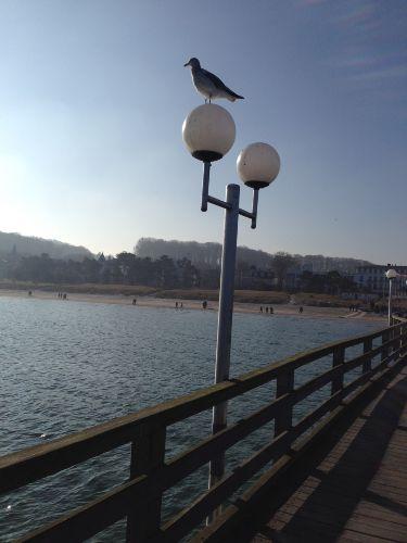 Impressionen auf der Seebrücke Binz